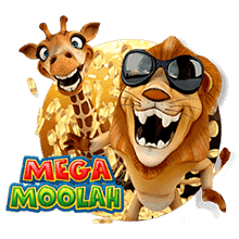 Kanadischer Online Casino Spieler knackt den Mega Moolah Jackpot element01 - CasinoTop