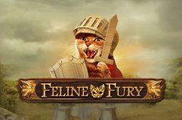 Uusi kissa-aiheinen Feline Fury on uniikki Play'n GO:n kolikkopeli