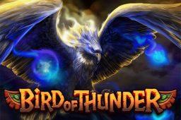 Bird of Thunder Image