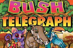 Bush Telegraph Image