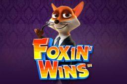 Foxin' Wins Image