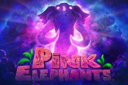 Pink Elephants Image