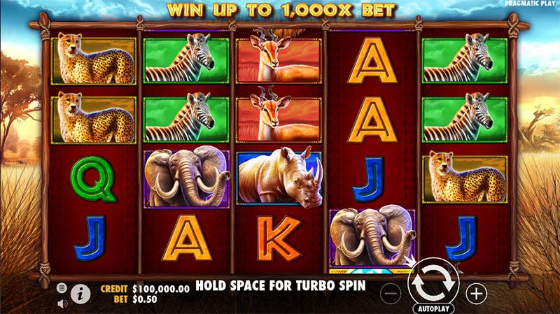 Safari King Slot Screenshot - CasinoTop