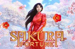 Sakura Fortune Image