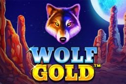 Wolf Gold Image