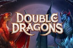 Double Dragons Image
