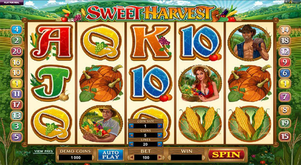Sweet Harvest Logo