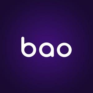 BaoCasino Logo