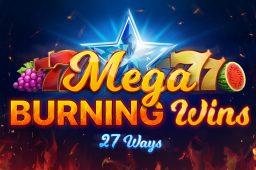 Mega Burning Wins: 27 ways Image
