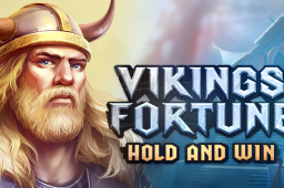 Vikings Fortune: Hold and Win Image