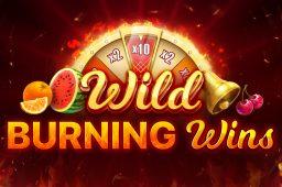 Wild Burning Wins Image