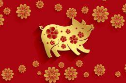 Fira in det kinesiska nyåret hos Mr Play och tävla om 50000 kronor - Thumb