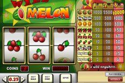 Wild Melon Slot
