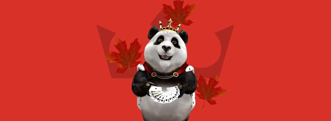 Autumn Harvest - Claim More Than 250 Free Spins Royal Panda Casino