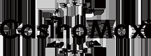 Casino Maxi Logo