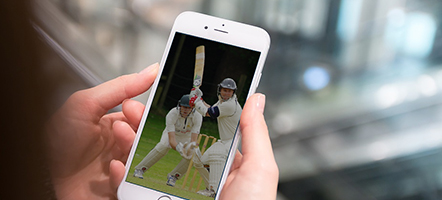 Choose a Sportsbook With Cricket Betting