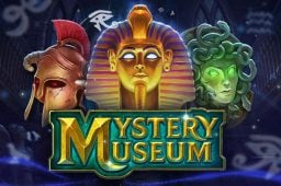 Mystery Museum Image