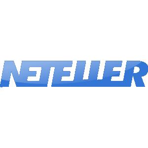 Neteller Logo Icon