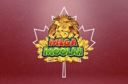 Vancouver resident hits record win on Mega Moolah's jackpot
