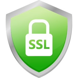 What Does SSL Mean