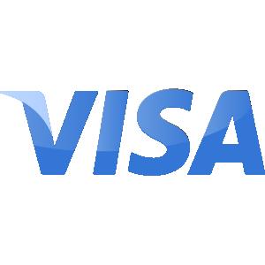 visa icon logo